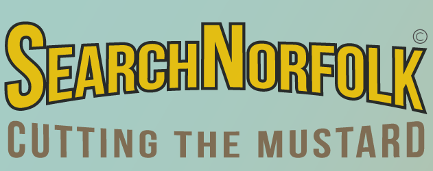 SearchNorfolk Social Search engine